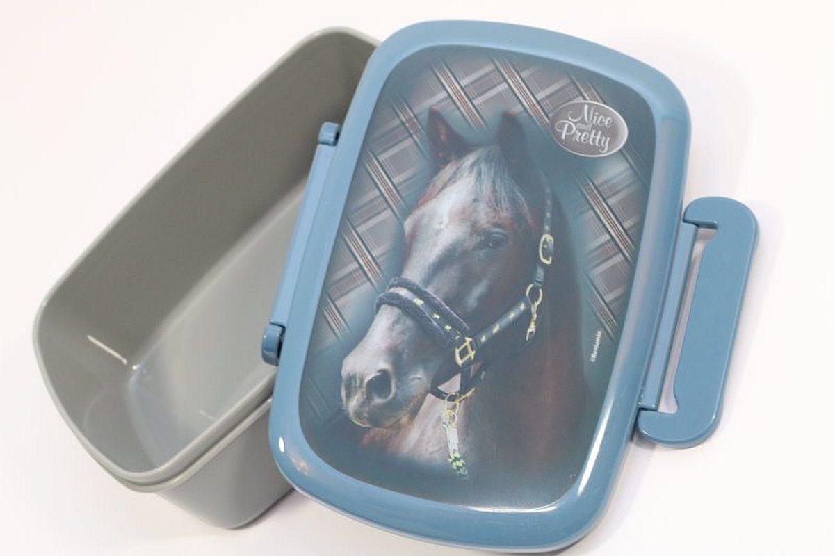 Lunch box / krabička na svačinu Kůň Modrý / vecidoskoly